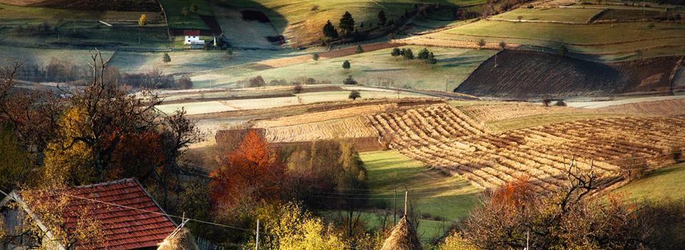 Bosansko selo